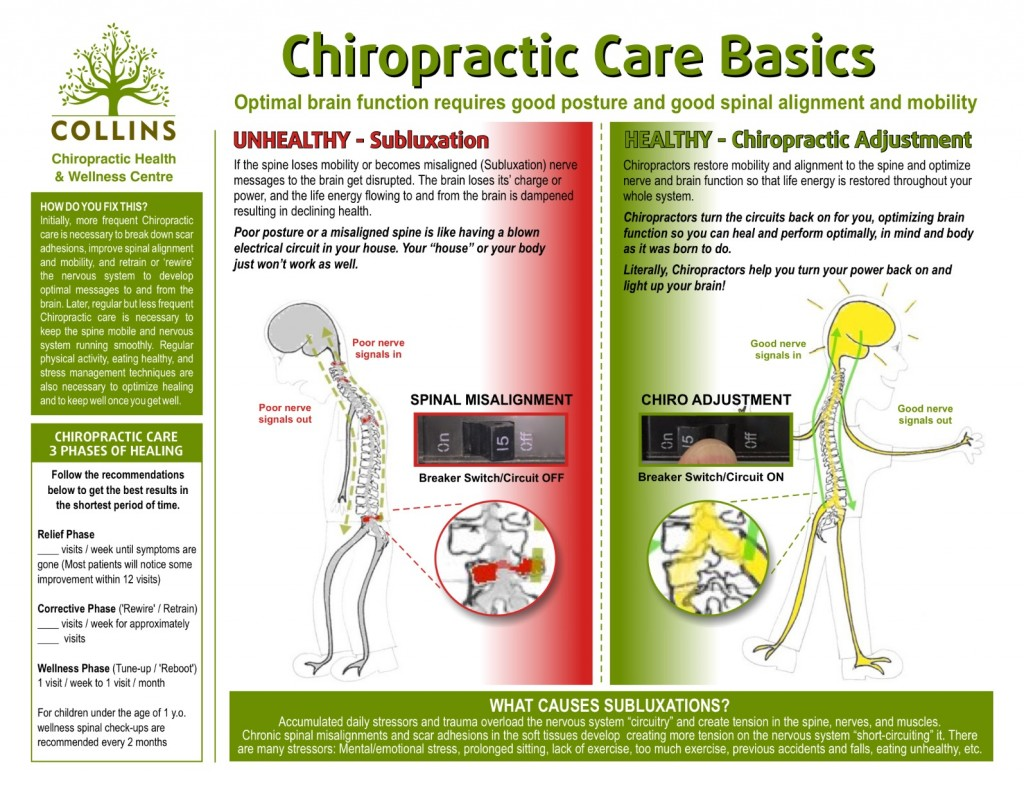 Chiropractic Care Infographic